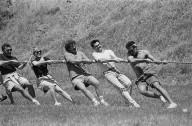 Tug of war at the Farallon company picnic., Tug of war at the Farallon company picnic.