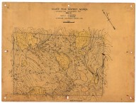 Silver Peak District, Nevada: geologic and topographic map, Silver Peak District, Nevada: geologic and topographic map