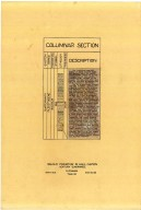 Columnar section, Columnar section
